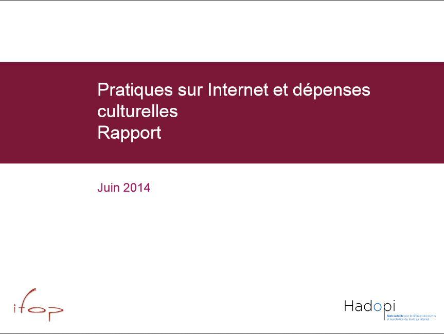 Pratiques sur internet et dépenses culturelles-1